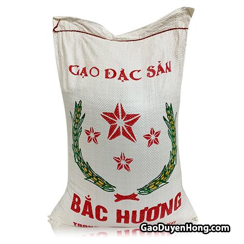 gao-bac-huong